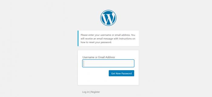WordPress reset Password page